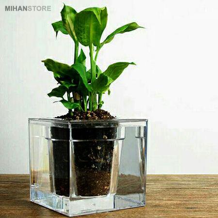 گلدان آکواریومی سون گرین (7GREEN)