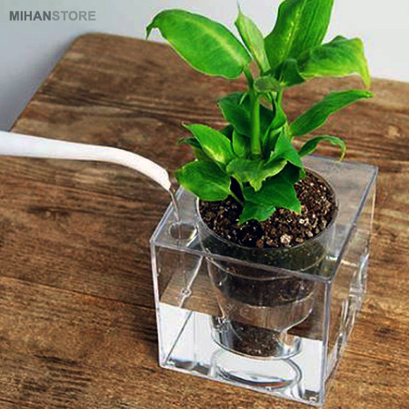 عکس محصول گلدان آکواریومی سون گرین (7GREEN)